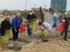 in-action-1-beach-cleanup-redu