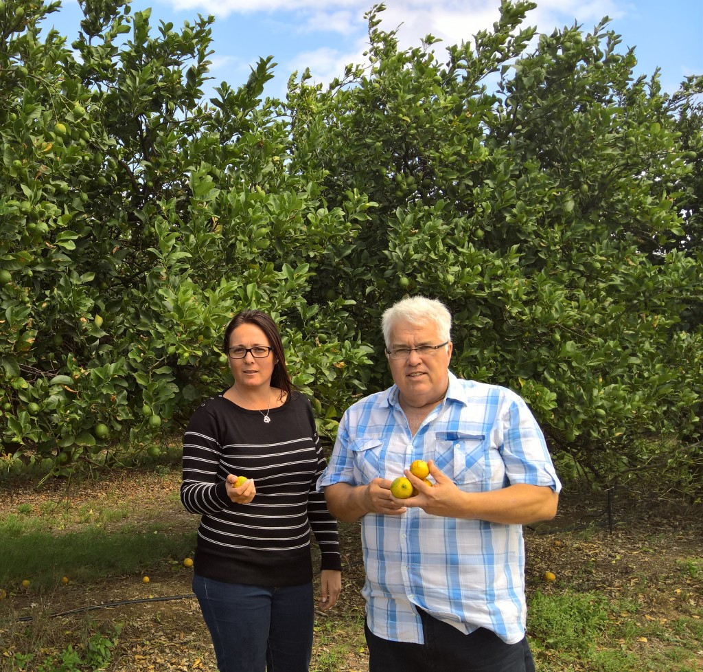 Zuurberg constituency leader Vicky Knoetze MPL and DA Shadow MEC for Safety and Security, Bobby Stevenson, in a recently stripped lemon orchard in the Sunday's River Valley.