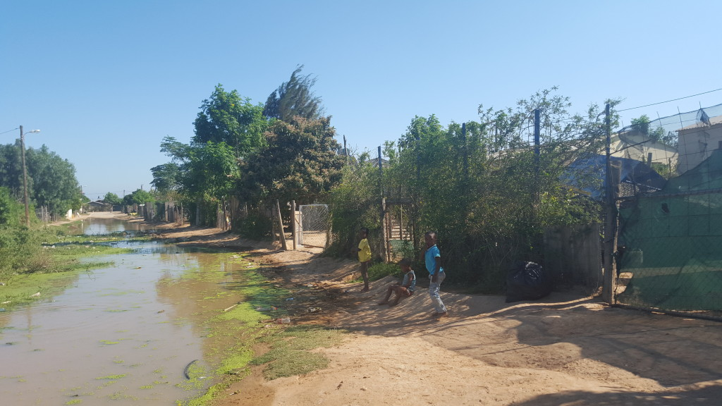 A river of deadly disease flows down one of the nameless streets in the Valencia Township in Addo.